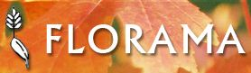 FLORAMA - Producteur d'arbres et arbustes